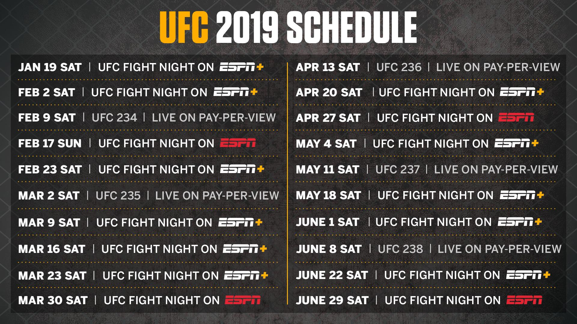 UFC Live Stream: How to Watch UFC Online Without Cable